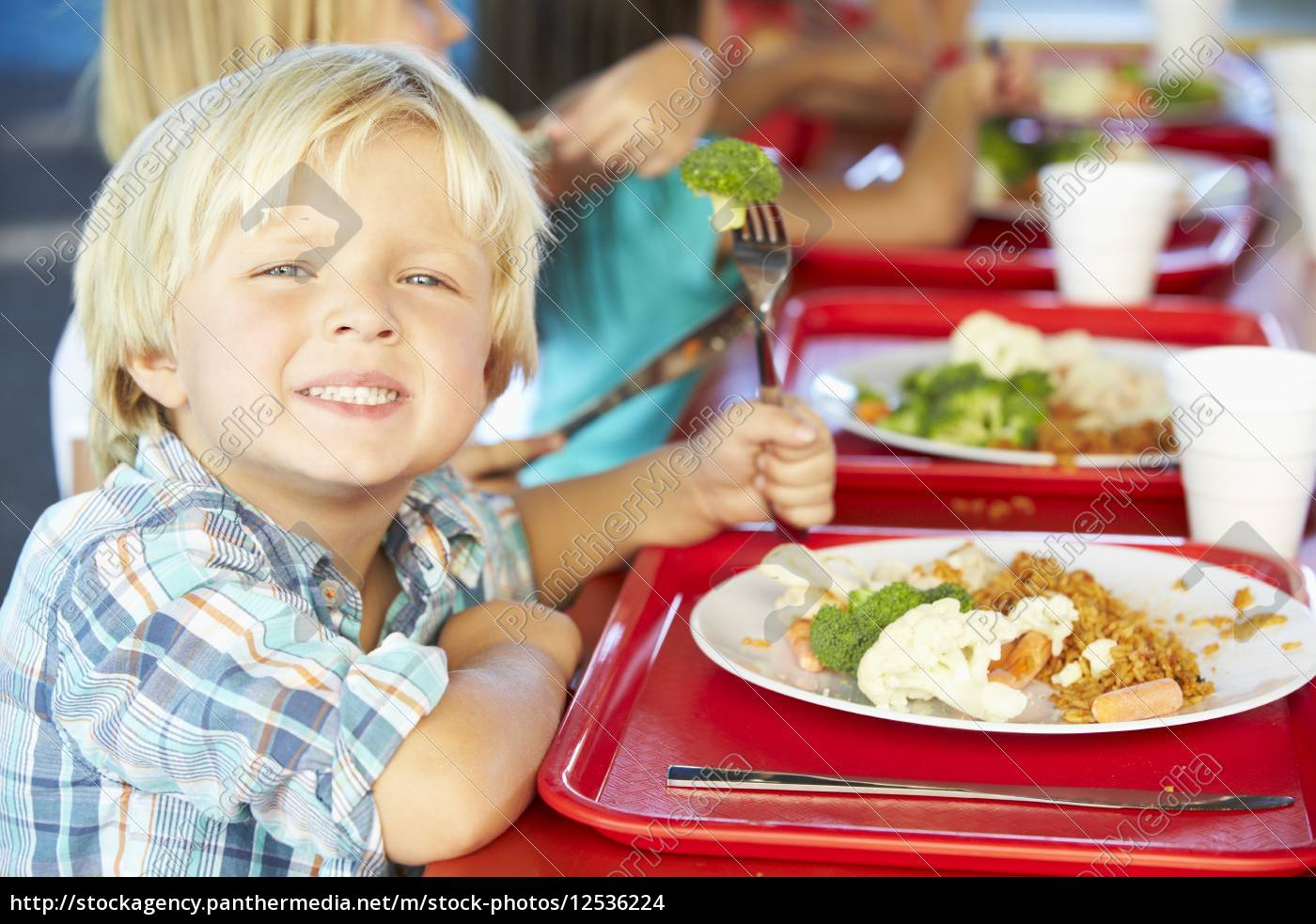 elementary, pupils, enjoying, healthy, lunch, in - 12536224