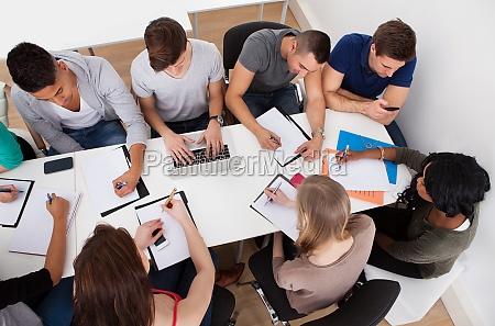 university students doing group study