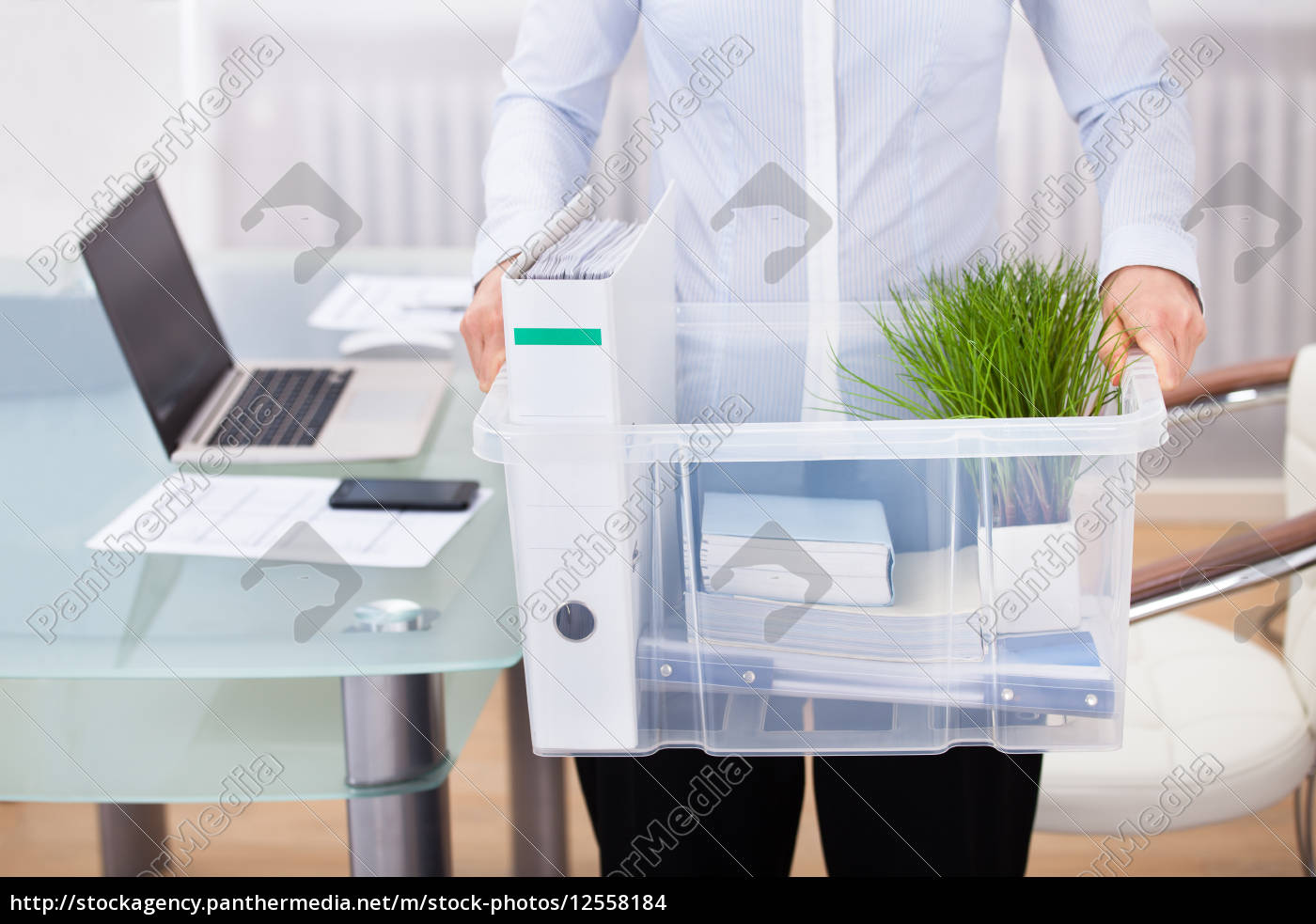 businessperson, carrying, office, supply - 12558184
