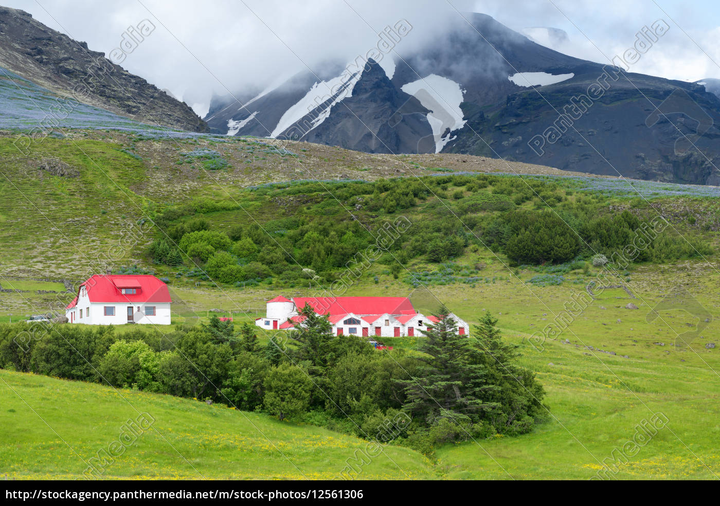 houses, in, the, mountains - 12561306
