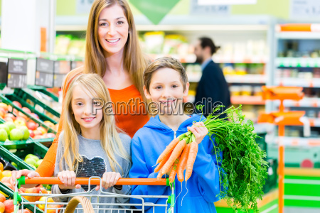 family out shopping at the grocery