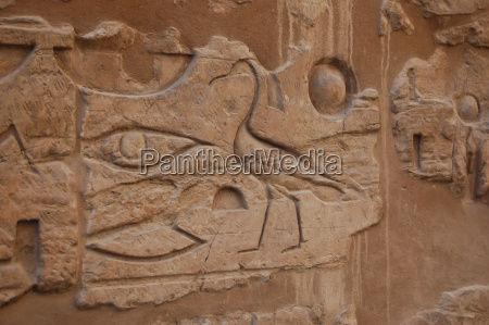 hieroglyphics relief on wall in luxor