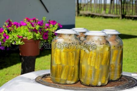 sourdough cucumbers kovaszos uborka during the