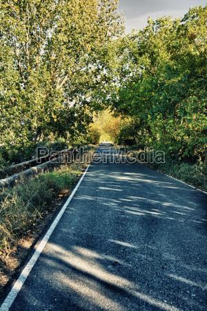 black poplar road