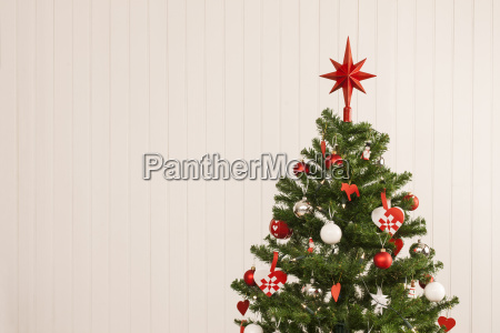 christmas tree against a wooden wall