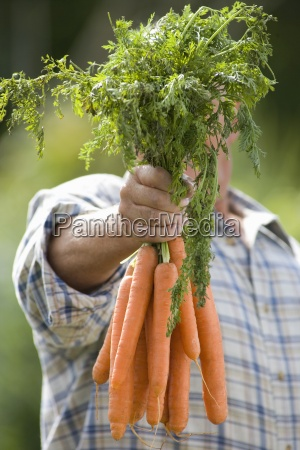 senior man with carrots obscuring face