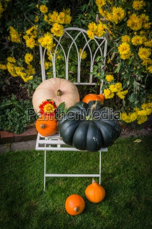 nicely decorated chair with pumpkins