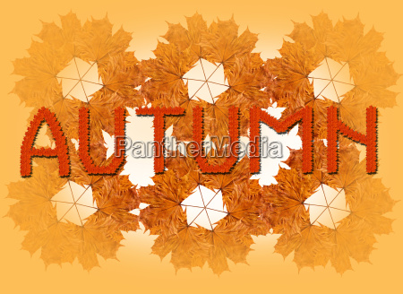 inscription autumn on the autumn leaves