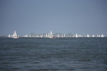 lots of yachts sailing at the