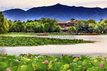 lotus garden boat buildings summer palace