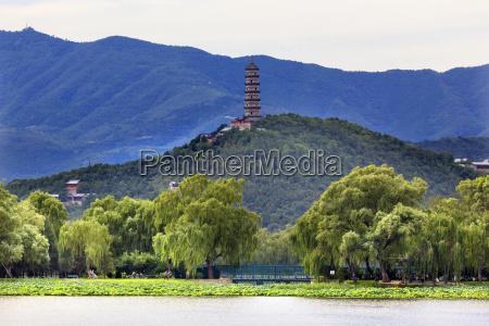 yue feng pagoda lotus garden willow