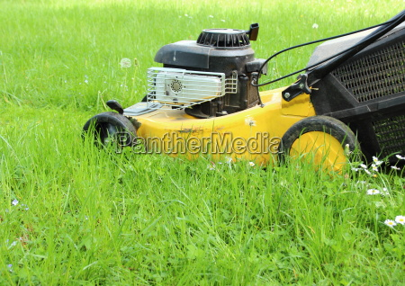 lawn mover cutting high grass in