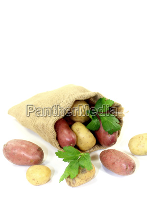 colorful potatoes in sack
