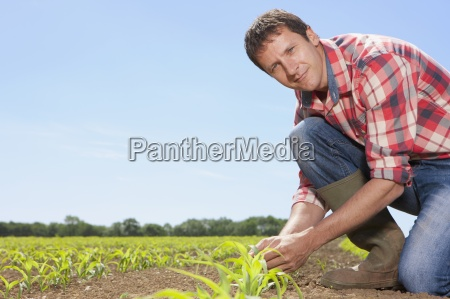 portrait of farmer tending to corn