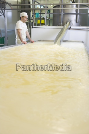 cheese maker watching curds and whey