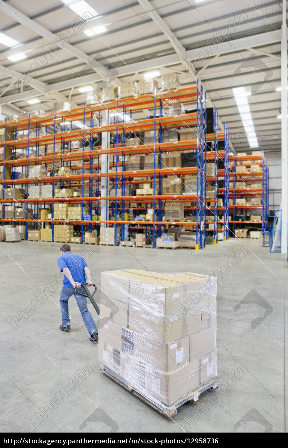 worker, pulling, wrapped, cardboard, boxes, on - 12958736