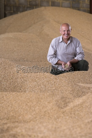 portrait of smiling farmer cupping wheat