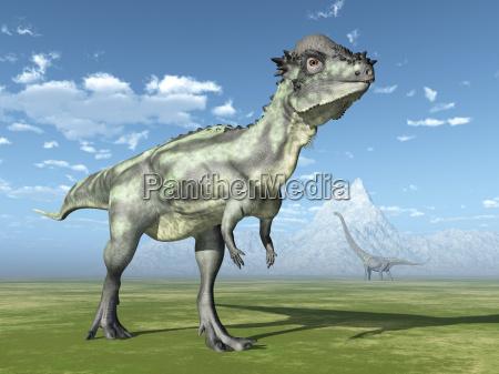 pachycephalosaurus and mamenchisaurus