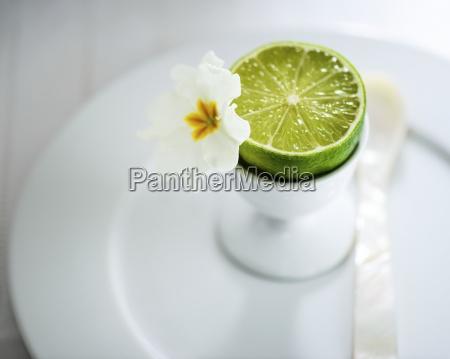 aaa blur blurred citric citrus citrus