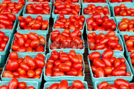 fresh organic cherry tomatoes background photo