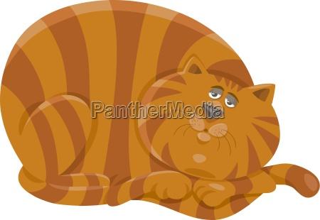 fat cat character cartoon illustration