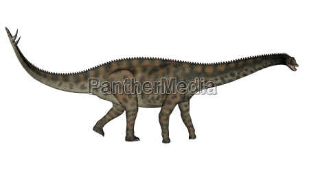spinophorosaurus dinosaur walking 3d render