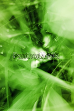 abstract, motion, background - 13231242