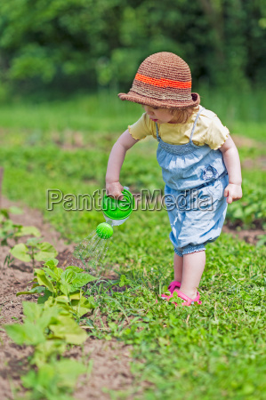 child pours vegetable bed