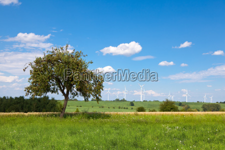 wind power tree on the