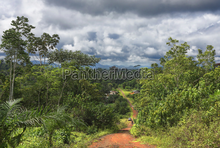 landscape in cameroon