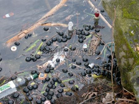 danger environment enviroment flora dirt pollution
