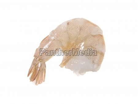 closeup of whole raw prawn in