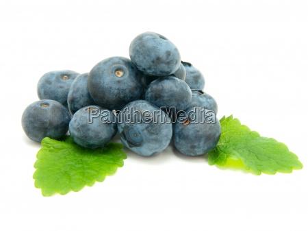 blueberry on white background