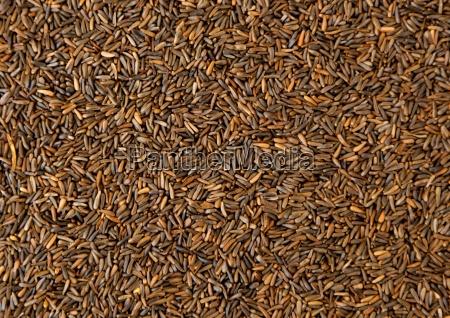 bird seed mixed granular food for