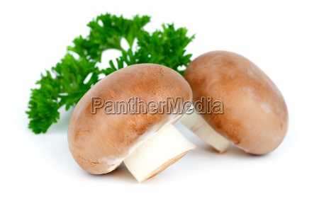 champignon with parsley on a white