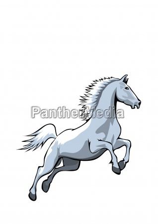 horse final blue white bg big