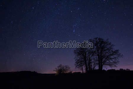 wintry starry sky