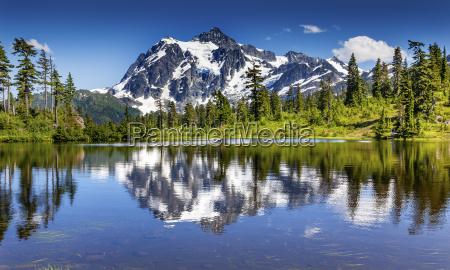 picture lake evergreens mount shuksan washington