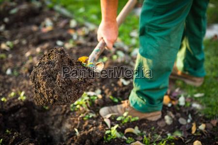 gardening man digging the garden