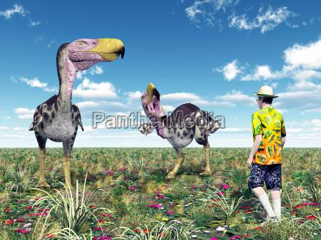 terror bird kelenken and tourist