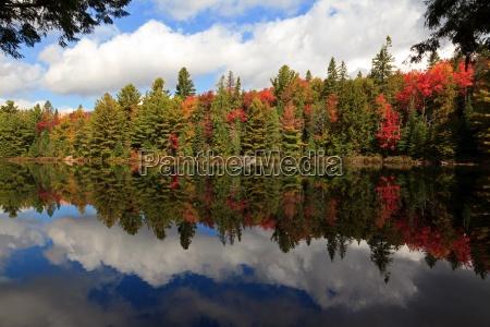 autumn foliage hot spot