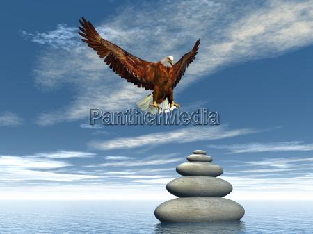peaceful eagle 3d render