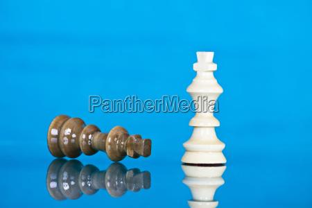 checkmate white defeats black