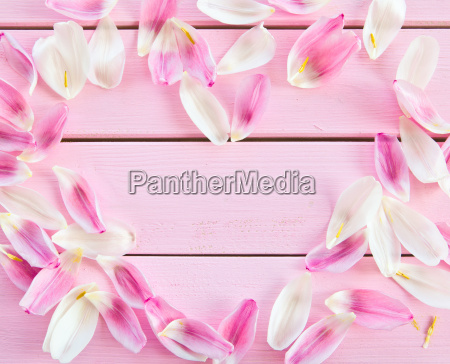 rustic wooden boards with tulpenblaettern