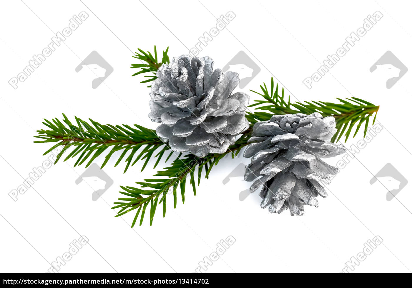 christmas, fir, cones, on, a, branch - 13414702
