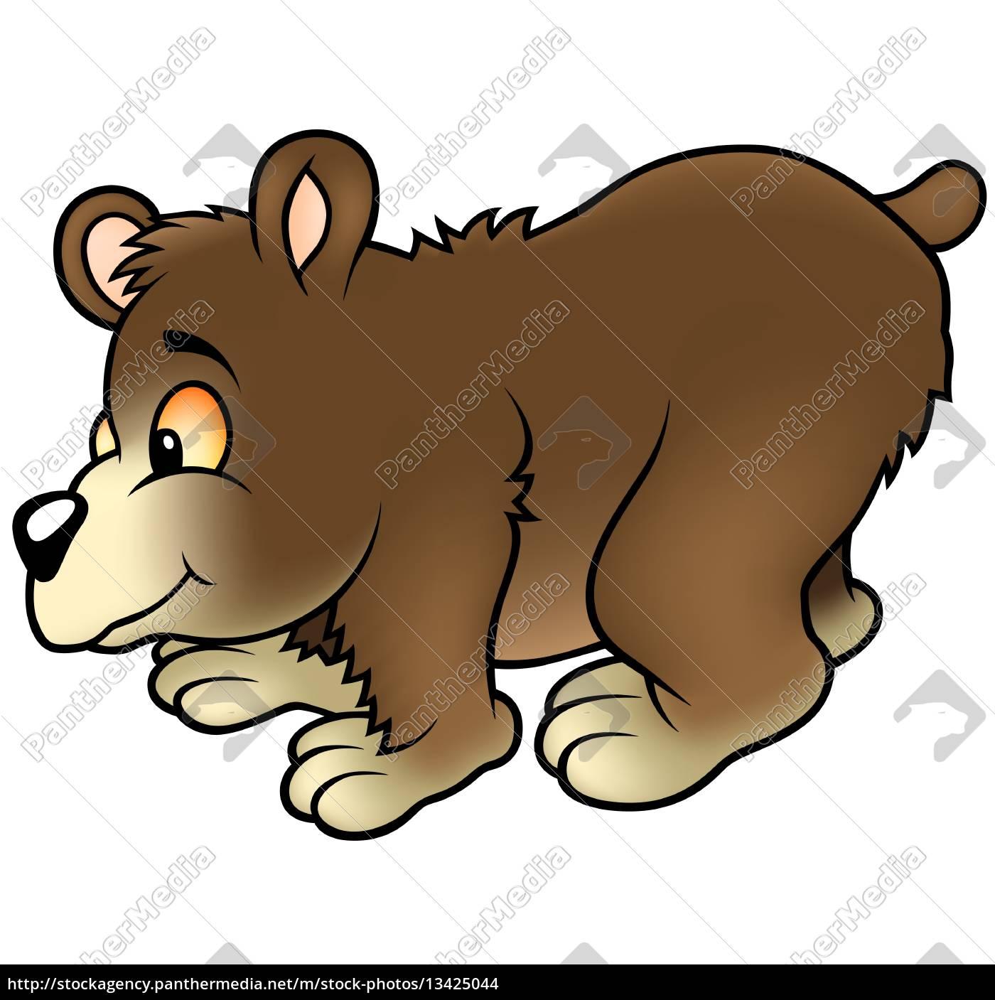 bear - 13425044