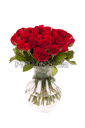 red roses in a glass vase
