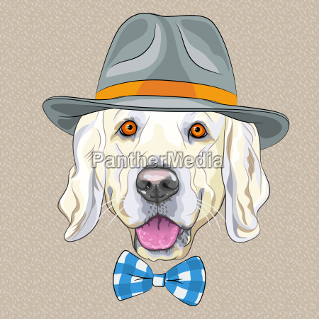 vector funny cartoon hipster dog golden