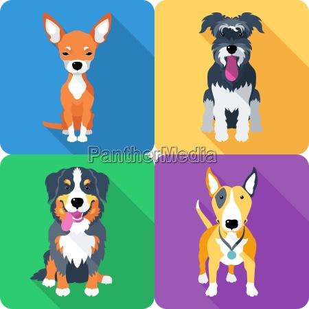 dog, icon, flat, design - 13450880