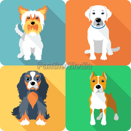 set, dogs, icon, flat, design - 13450864